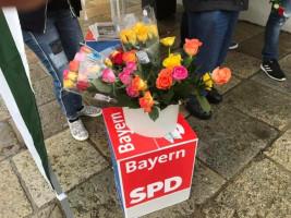 Muttertagsrosen Europawahl 2019