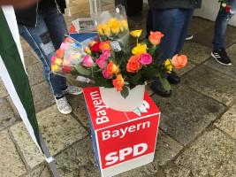 Infostand Europawahl 2019 3